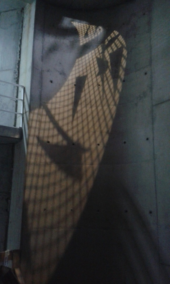 Cut by Shadows